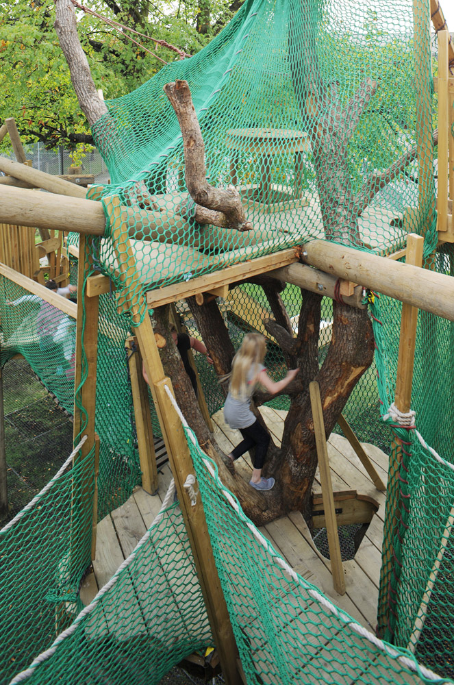 Green netting structure with recycled tree limbs