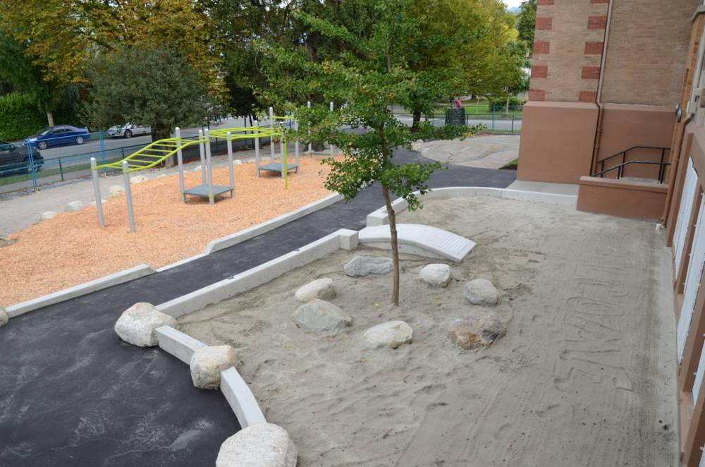 Sand play area with a shade tree