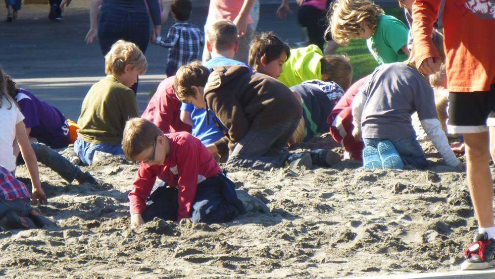 Children playing in the sand pit