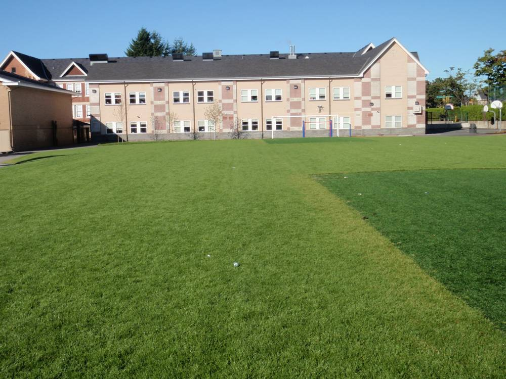 Grass field with astroturf around goal posts due to high wear in those areas