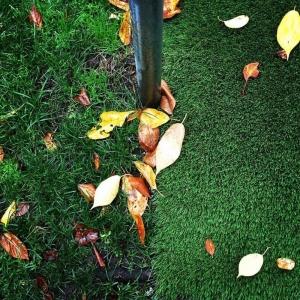 Varied grass textures