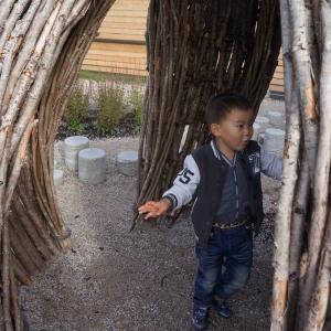 Branch hut