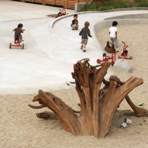 A large piece of driftwood sparks the imagination