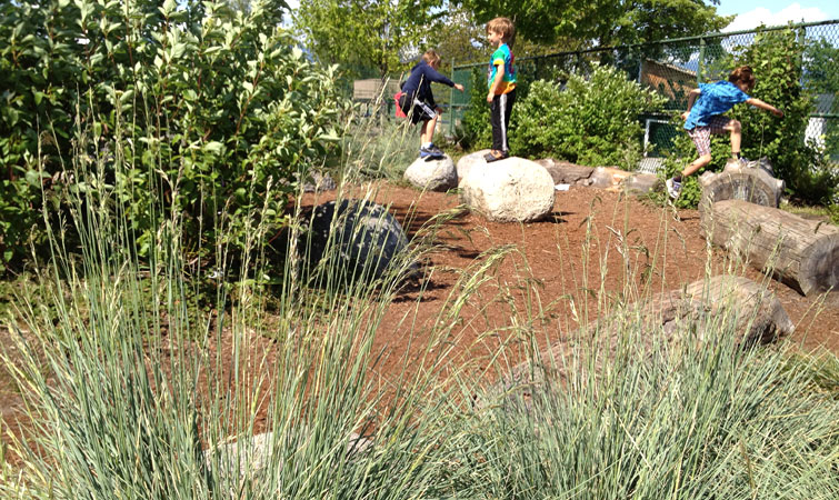 Boulders and logs make popular play elements