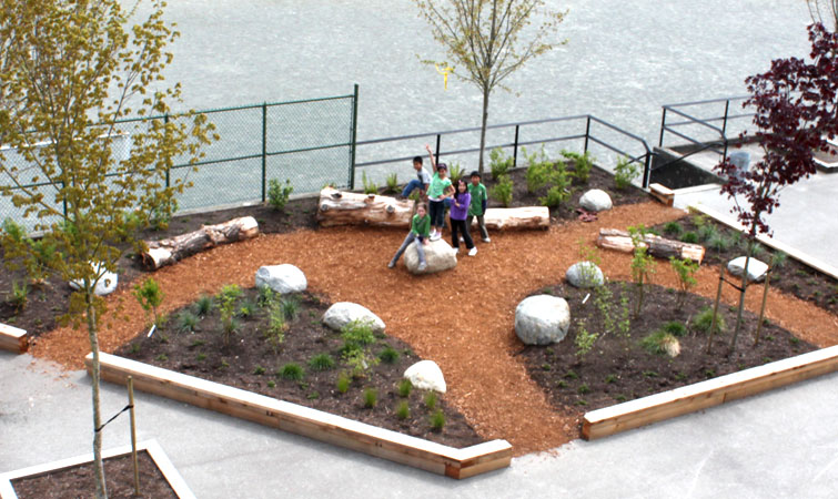 Aerial view of the outdoor classroom garden