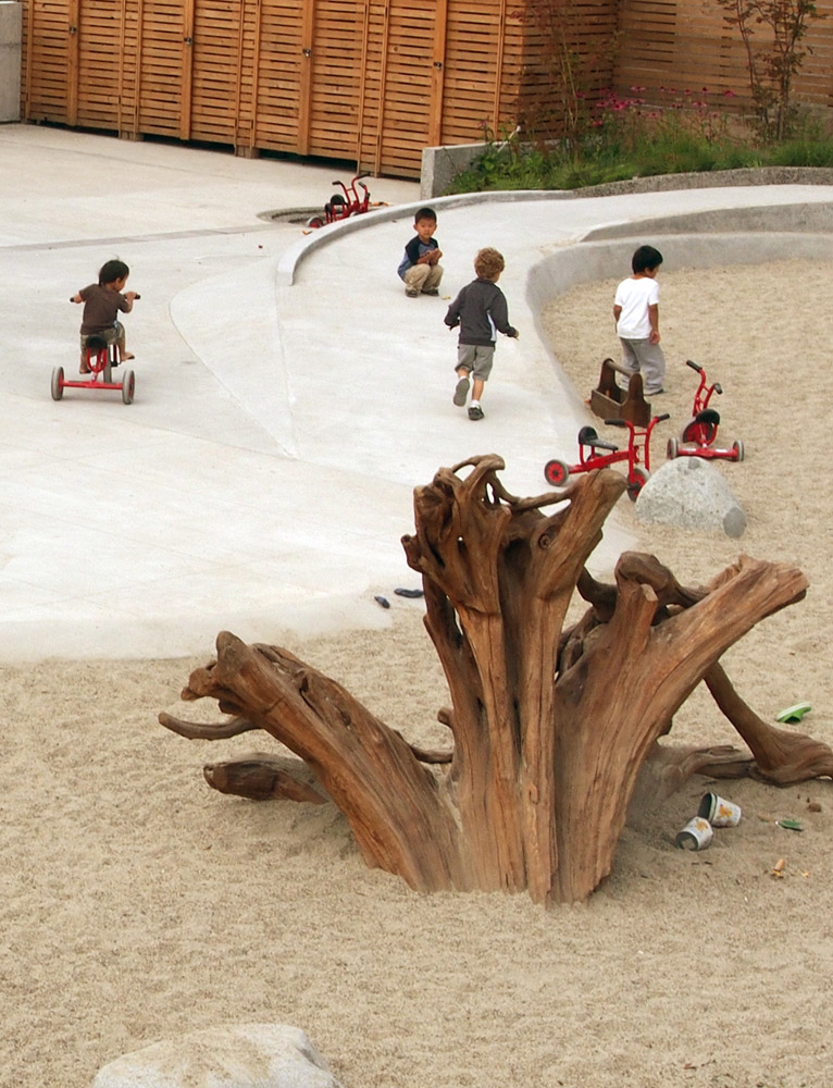 A driftwood stump becomes an interesting play structure